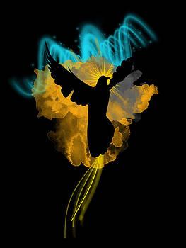 I believe I am a Phoenix by Denis Marsili