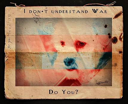 I Don't Understand War by Kathy Tarochione