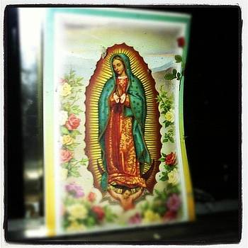 I Just Like Pictures If The Virgin Of by Scott Shiffman