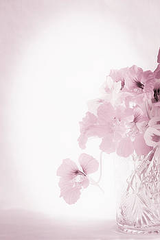 Sandra Foster - I Like My Nasturtiums Soft And Pink