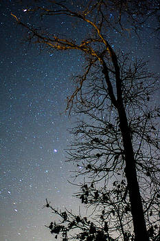 I looked up and all I saw was vastness. Stars were everywhere and I was just here. by Noah Siano