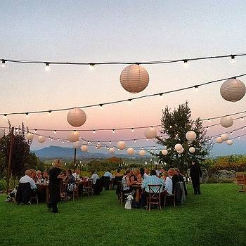 I Love Love This.  Small Weddings Rock by Sarah Dawson