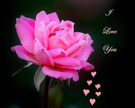 Rosanne Jordan - I Love You