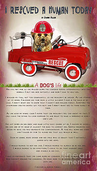 I Rescued A Human Today by Kathy Tarochione