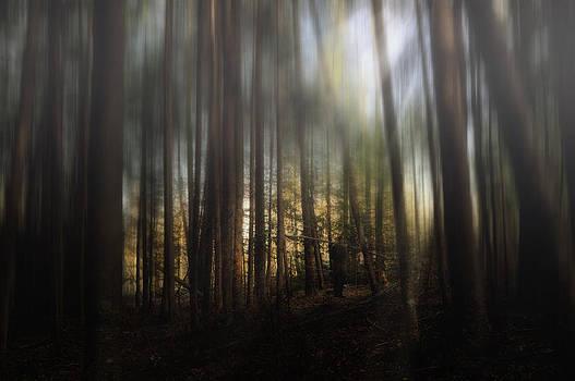 I Stand Alone by Gary Smith