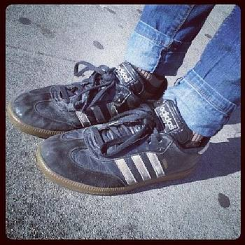 I Think My Sambas Have Seen Better Days by Melissa Eve