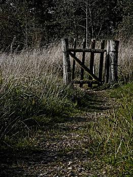 I Will Wait For You by Odd Jeppesen