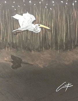 Ibis over the Marsh by Cristel Mol-Dellepoort