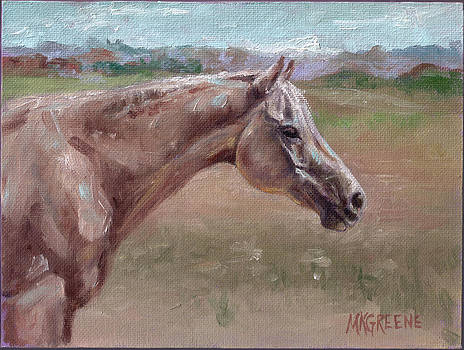 Ibn in Retirement by Margi Greene