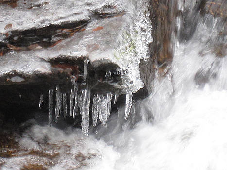 Ice Cold Creek In Colorado by Tammy Sutherland