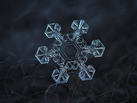 Snowflake photo - Ice crown by Alexey Kljatov