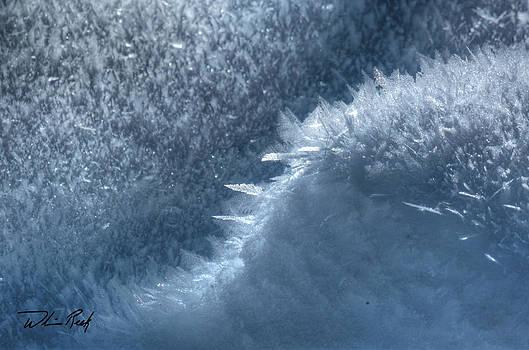 William Reek - Ice Crystals 3