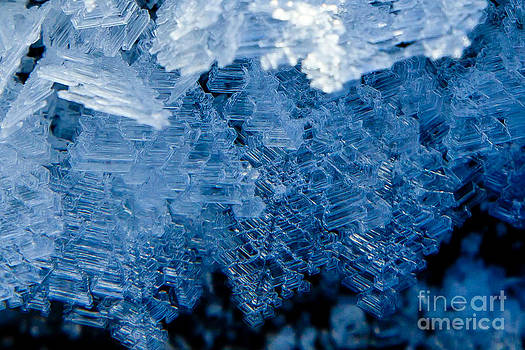 Ice Crystals by Chris Heitstuman