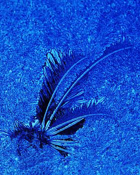 Guy Shultz - Ice Feather 2