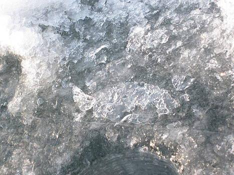 Ice Fish by Joanna Baker - Jenkins