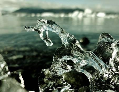 Sarah Pemberton - Ice Horse