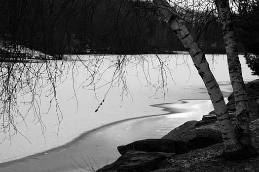 Vadim Levin - Ice Lake