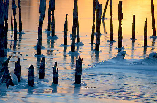 Ice on the Pilings by Sheila Noren