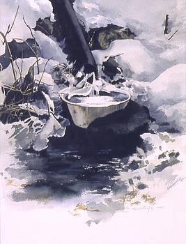Ice Sculpture by Tom Wooldridge
