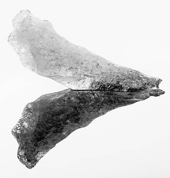 Ice sculpture by Vinicios De Moura