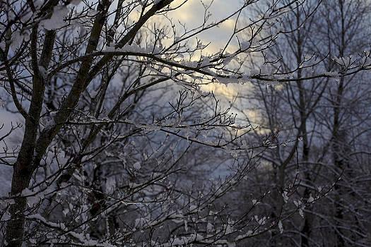 Winter's Embrace by Jane Eleanor Nicholas