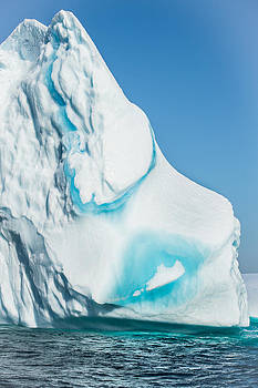 Ice XXX by David Pinsent