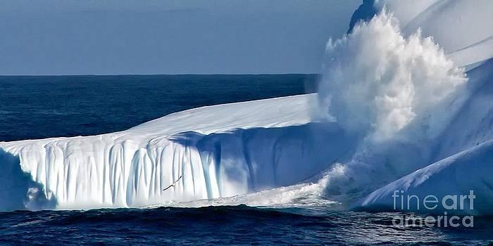 Kate McKenna - Iceberg