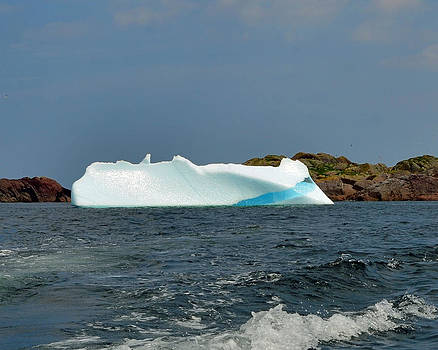 Lisa Phillips - Iceberg off Little Fogo Islands Newfoundland