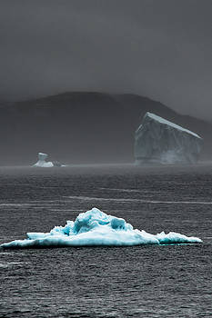 Icebergs in the Bay by David Pinsent