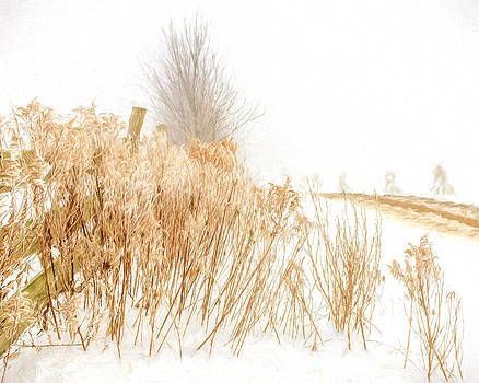 Chris Bordeleau - Iced Goldenrod at fields edge - artistic