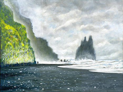 Iceland Reynisfjara Beach by Stan Sweeney