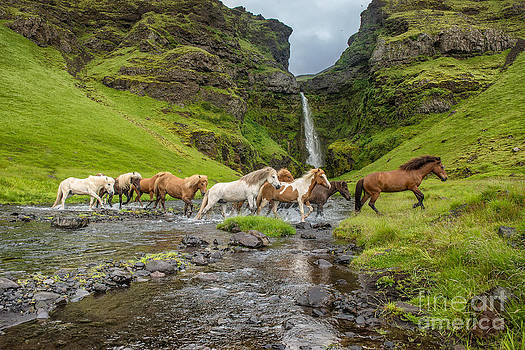 Iceland's scenery by Heather Swan