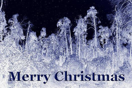 Nina Fosdick - Icey Merry Christmas