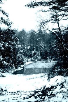 Nina Fosdick - Icey Pond