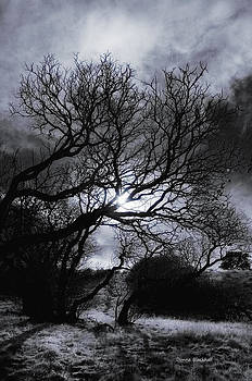 Donna Blackhall - Ichabod