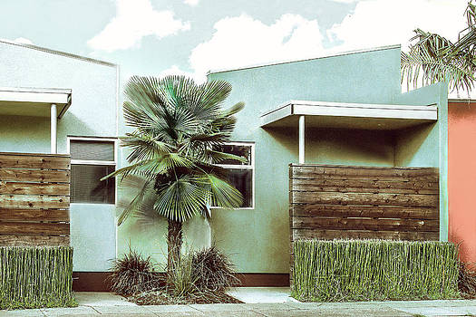 Iconic California Modern Architecture by Dorothy Walker