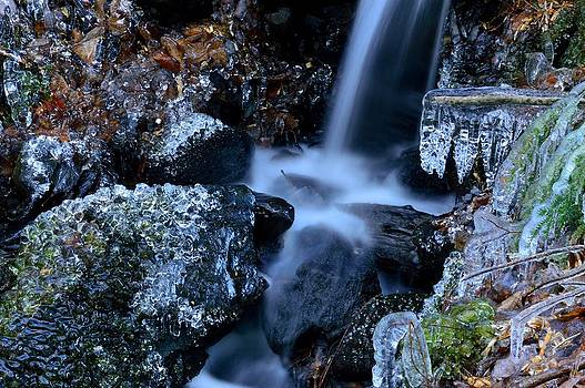 Icy brook by Glenn Sanborn