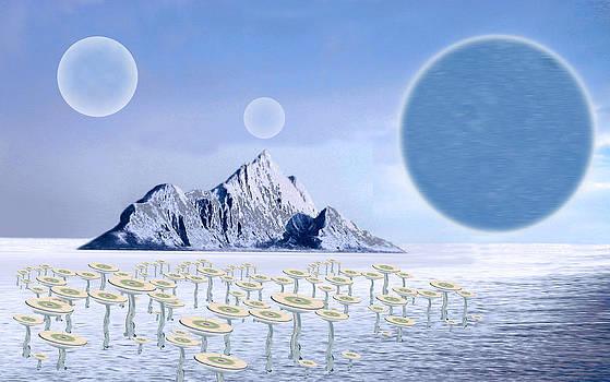 Icy Desert by Piero Lucia