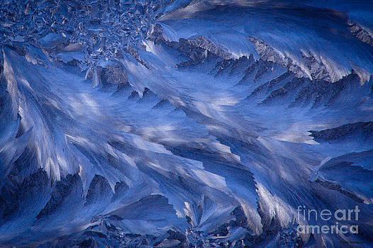 Icy Rush by Chris Heitstuman