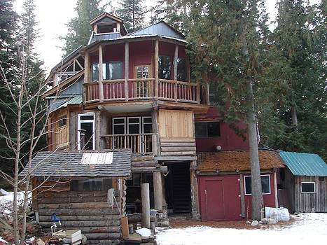 Windy Mountain - Idaho Hippie House 3 stories built on tree trunks