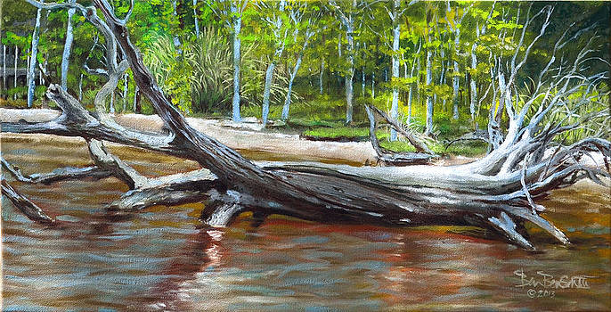 If A Tree Sinks by Ben Bensen III