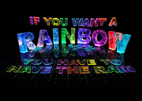 If You Want a Rainbow You Have to Have the Rain by Jill Bonner
