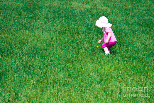 I'll Pick this Pretty Flower for You by Karen Lee Ensley