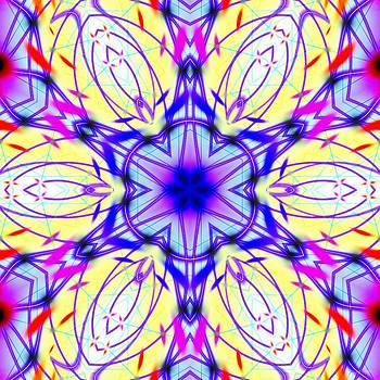 Illuminated Blossom by Derek Gedney