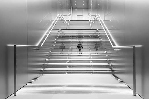 Illusional Stairs by Renee Doyle