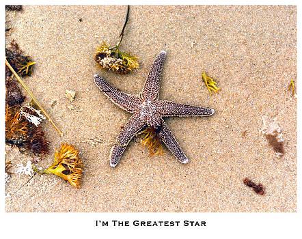 I'm the Greatest Star by Lorenzo Laiken