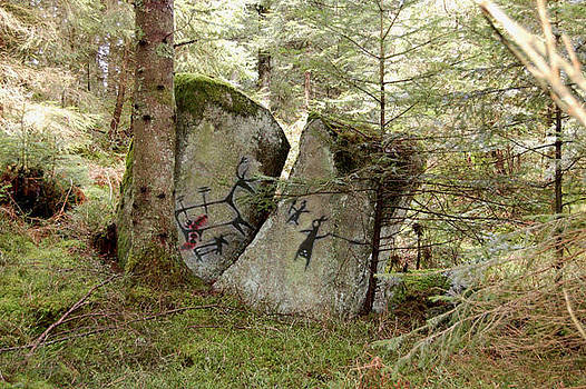 Images Amerindiennes Petroglyphes by Gino Carrier