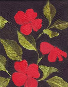 Impatiens by Mary Adam