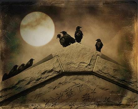 Gothicrow Images - Crows Attend An Important Meeting