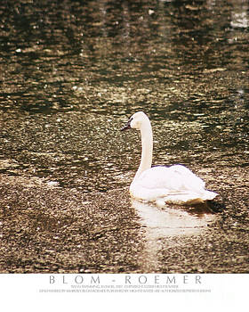 Impressionist Swan by Kimberly Blom-Roemer